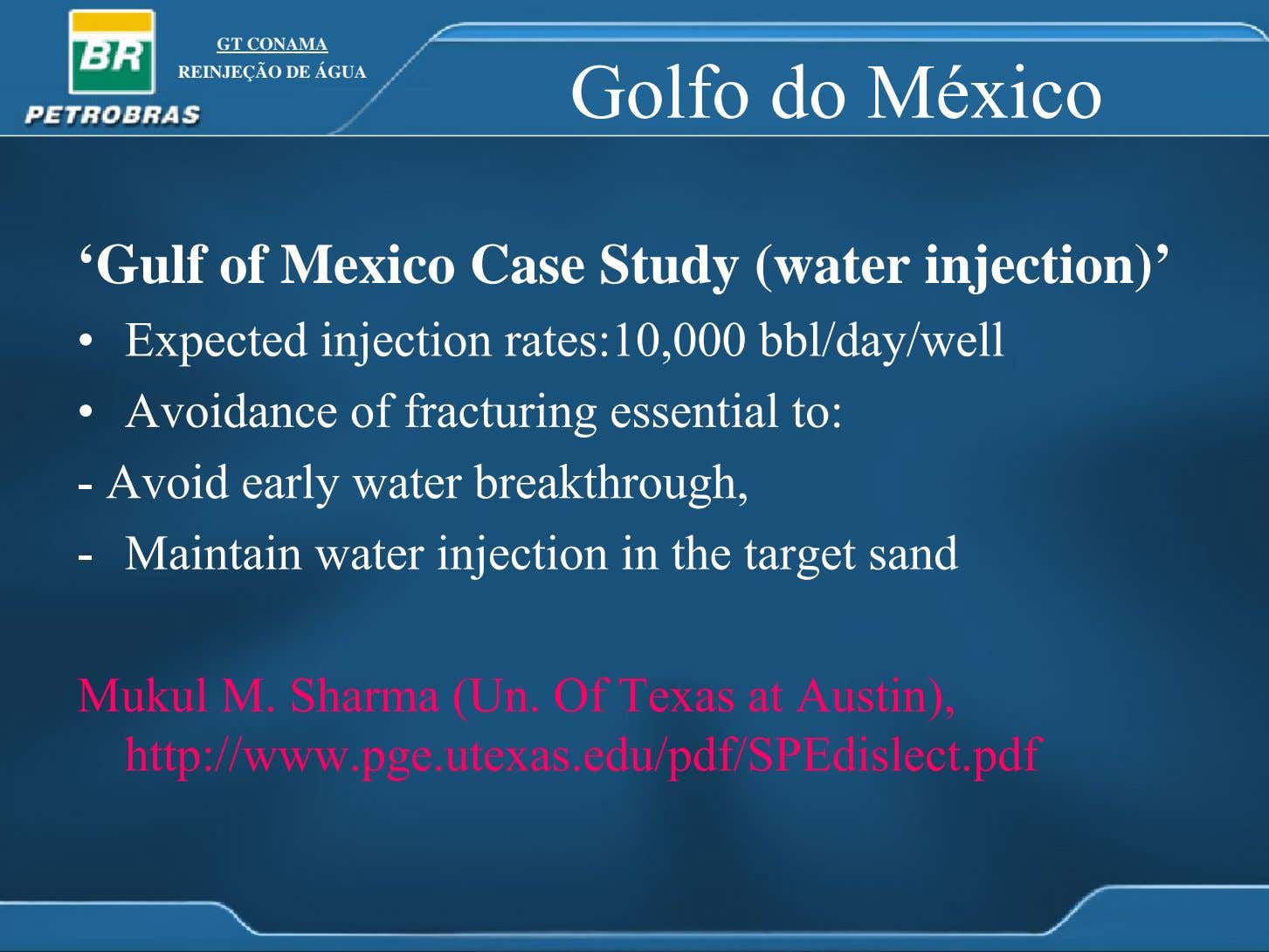 GT CONAMA REINJEÇÃO DE ÁGUA Golfo do México 'Gulf of Mexico Case Study (water injection)'