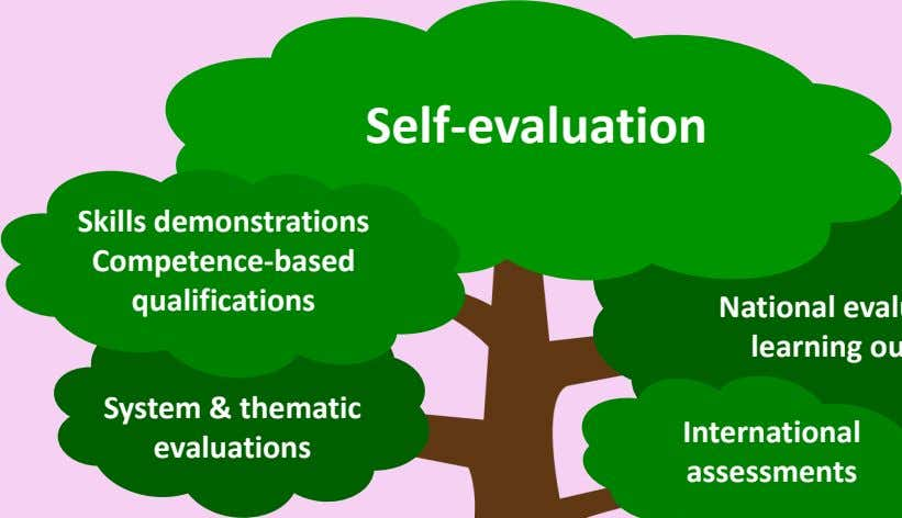 Self-evaluation Skills demonstrations Competence-based qualifications System & thematic evaluations