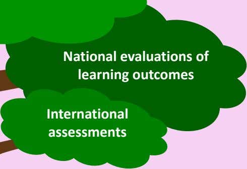 National evaluations of learning outcomes