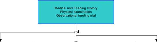 Medical and Feeding History Physical examination Observational feeding trial