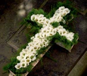 ® Floral Foam for fresh flowers | Rings & Crosses Rings & Crosses Art. No. Art.