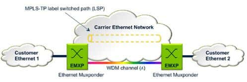 manageability than the basic Ethernet SVLAN architecture. Figure 11. Using MPLS-TP to define label switched paths