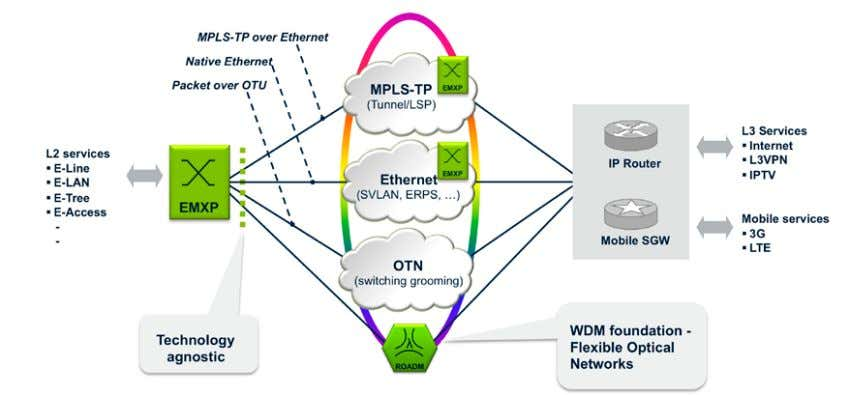 Figure 19. Transmode's Native Packet Optical 2.0 architecture offers a wide range of Layer 2