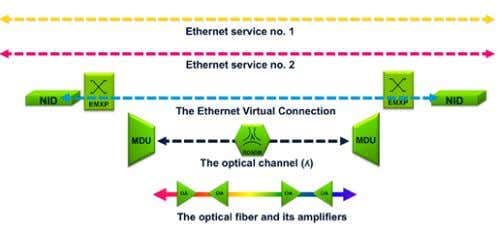 optical or in the packet switching elements of the network. Figure 29. An Ethernet service in