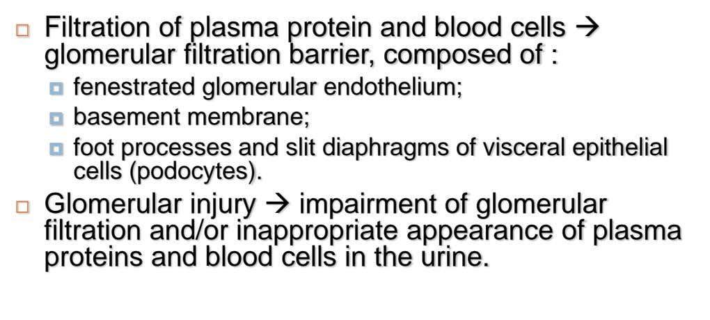  Filtration of plasma protein and blood cells  glomerular filtration barrier, composed of : 