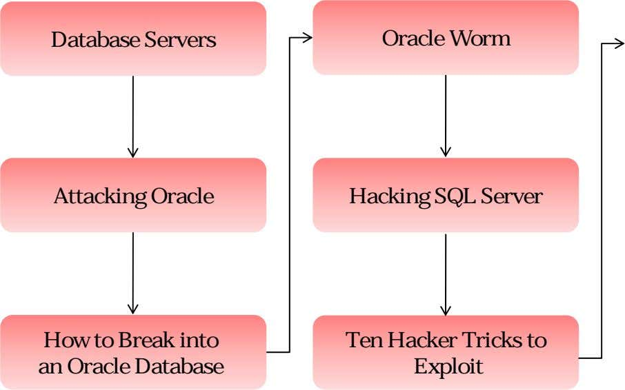 Database Servers Oracle Worm Attacking Oracle Hacking SQL Server How to Break into an Oracle