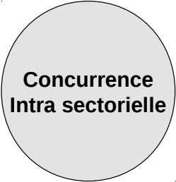 Concurrence Intra sectorielle