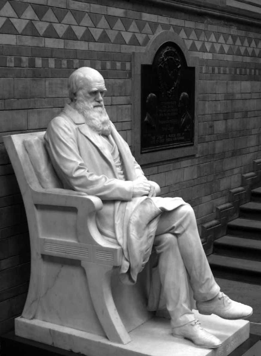 Origin of Species Statue of Charles Darwin in the Natural History Museum, London. 8