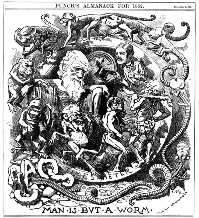 Introduction Darwin's theory in the Punch almanac for 1882, published at the end of 1881. distances,