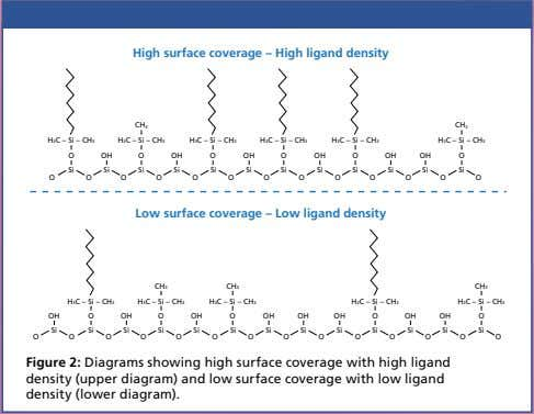 High surface coverage – High ligand density CH3 CH3 H3C – Si – CH3 H3C