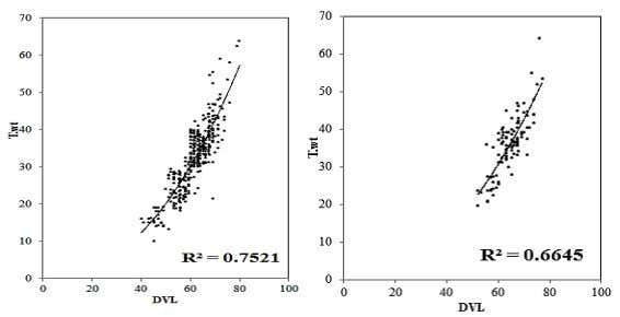 of growth pattern affecting pearl production in pearl oyster Pinctada radiata S1 S2 S3 DVL vsT.wt