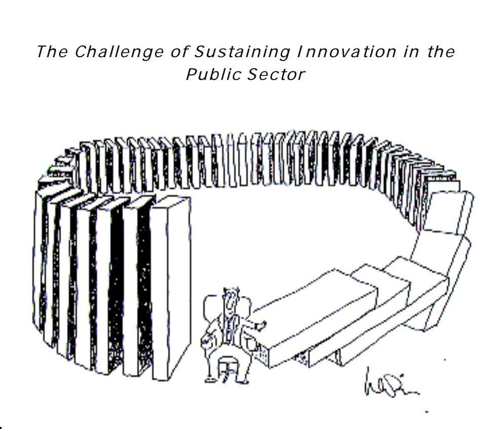 The Challenge of Sustaining Innovation in the Public Sector