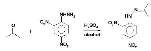 Figure 5. Reaction and complete mechanism of Ketone with 2,4 – DNP. All of the