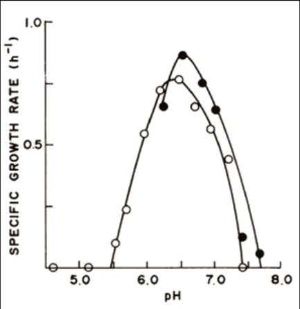 Effect of pH on the specific growth rate of B. fibrisolvens Ce51 at 38.5°C with