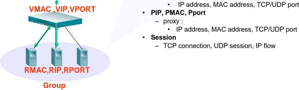 • IP address, MAC address, TCP/UDP port VMAC ,VIP,VPORT • PIP, PMAC, Pport – proxy