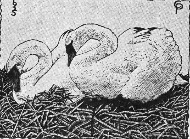 """Swans"" 1925, wood engraving, 8 x 10.5 cms. The nearest swans to his home at"