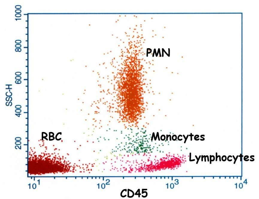 PMN RBC Monocytes Lymphocytes CD45