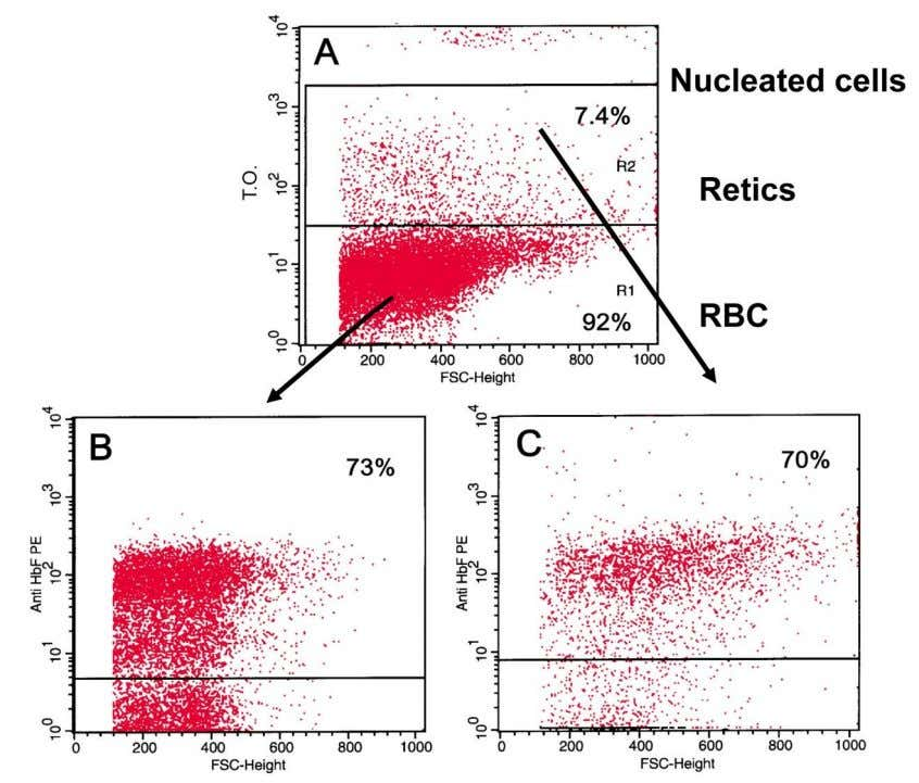 Fig. 2. Flow cytometry analysis of F-RBC and F-Retics. Blood cells stained with thiazol-orange (T.O)