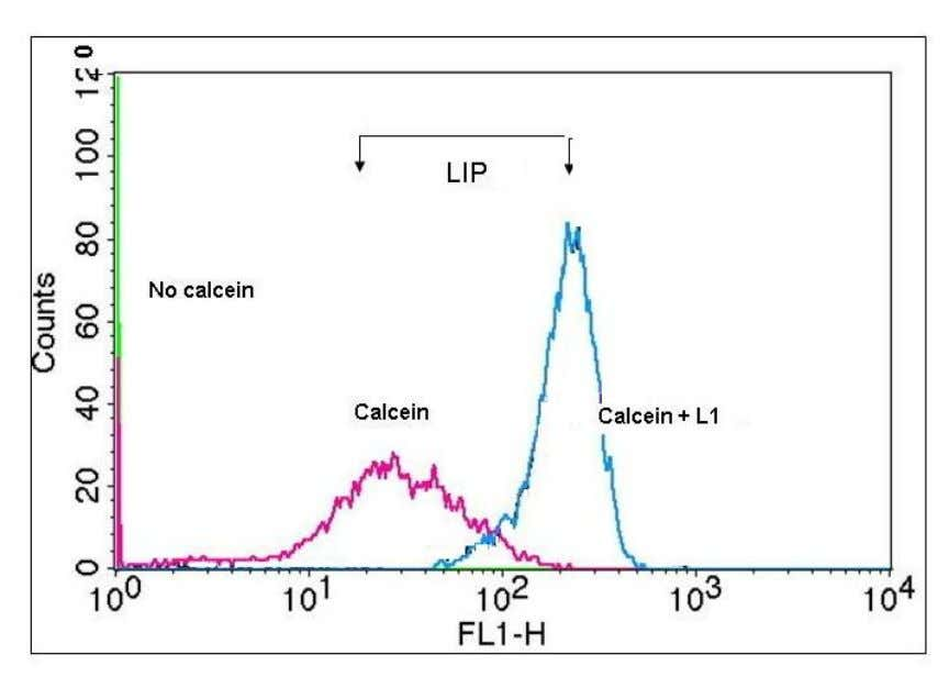 Fig. 4. Flow cytometry of labile iron pool (LIP) in RBC. Blood cells were loaded