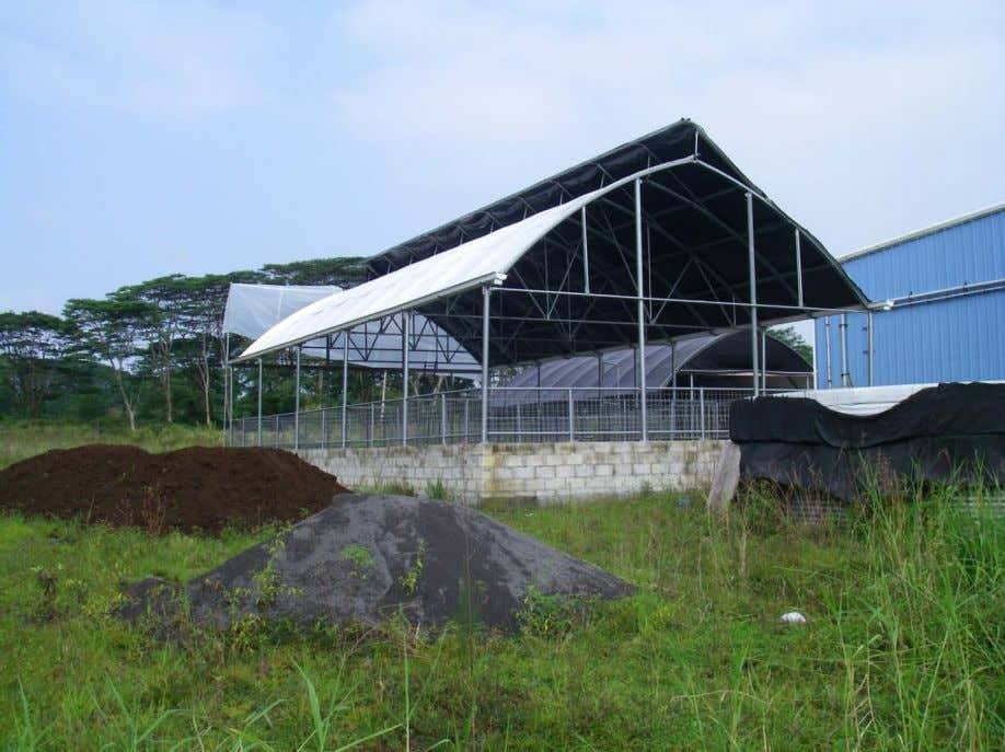 by R. David Fischer PE, Hawaii NRCS Resource Engineer Figure 1 – IDLS Piggery, Kurtistown, Big