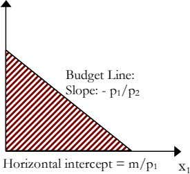 Budget Line: Slope: - p 1 /p 2 Horizontal intercept = m/p 1 x 1