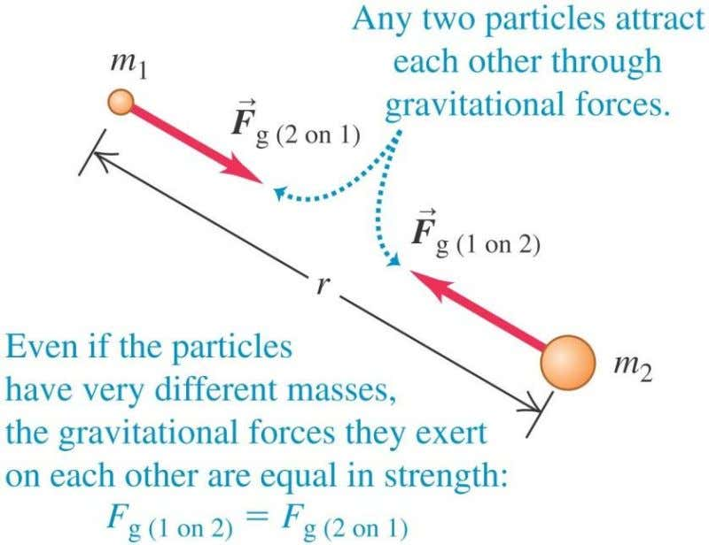 Newton's law of gravitation Copyright © 2012 Pearson Education Inc.