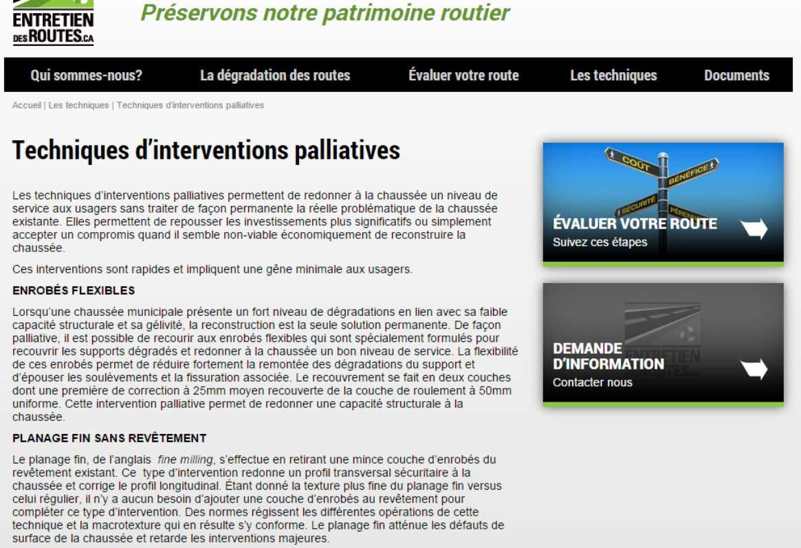 Techniques d'interventions palliatives