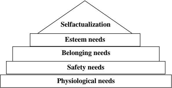 Selfactualization Esteem needs Belonging needs Safety needs Physiological needs