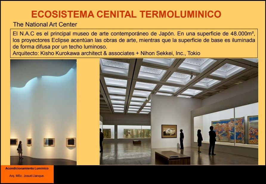 ECOSISTEMA CENITAL TERMOLUMINICO The National Art Center El N.A.C es el principal museo de arte