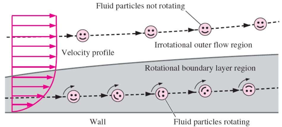 flow: fluid elements in a rotational region of the flow rotate, but those in an irrotational