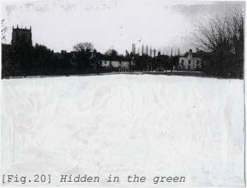 [Fig.20] Hidden in the green