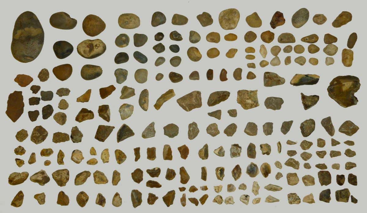 Discoveries Objects unearthed in Writtle excavation [Fig.28]