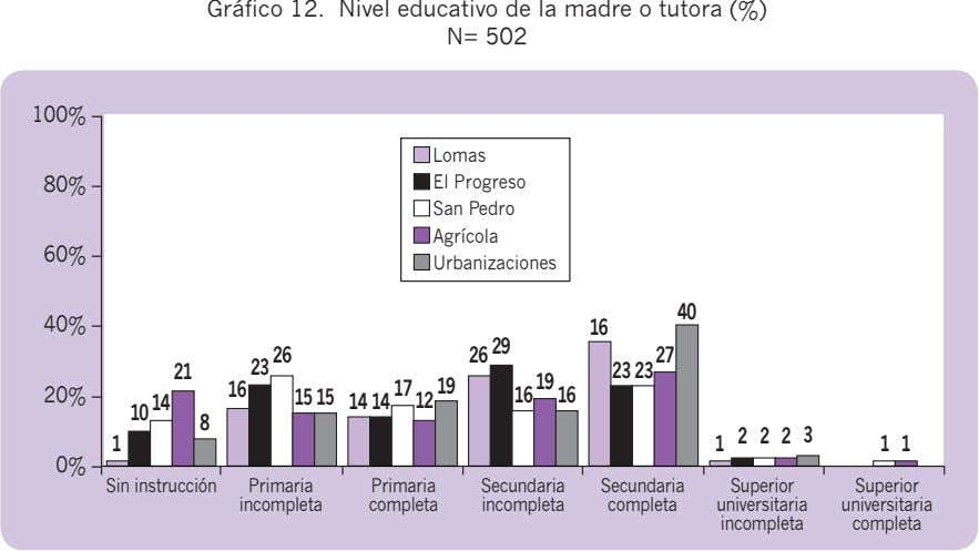 Gráfico 12. Nivel educativo de la madre o tutora (%) N= 502 100% – Lomas