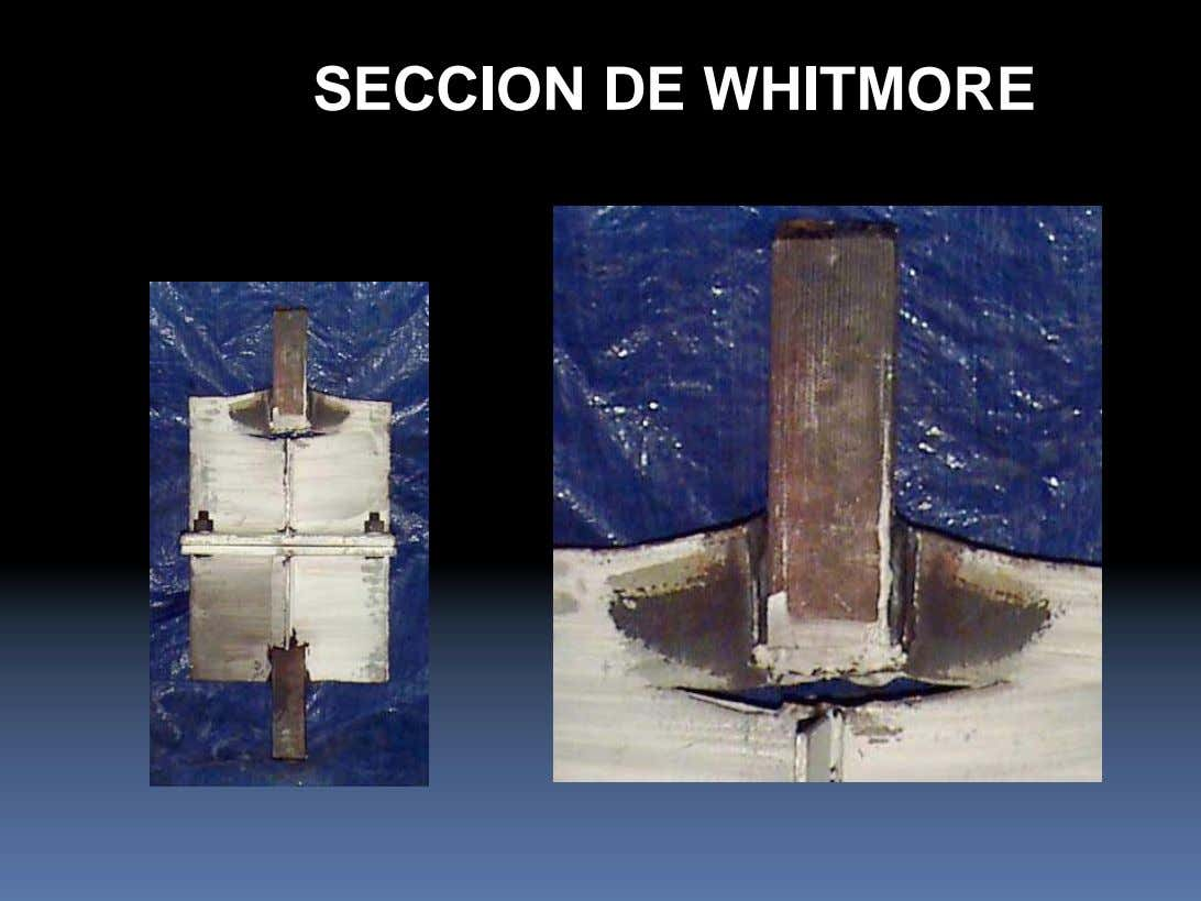 SECCION DE WHITMORE