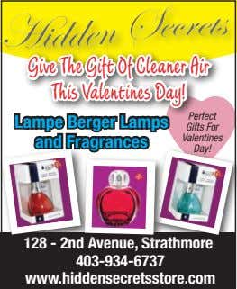 Give The Gift Of Cleaner Air This Valentines Day! Lampe Berger Lamps and Fragrances Gifts