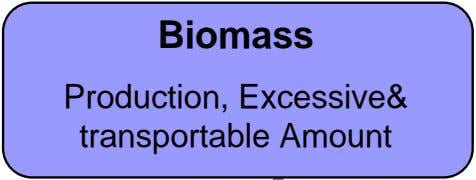 Biomass Production, Excessive& transportable Amount