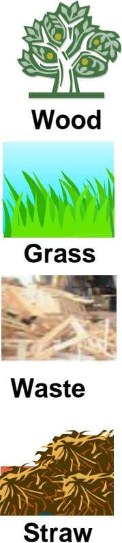 Wood Grass Waste Straw