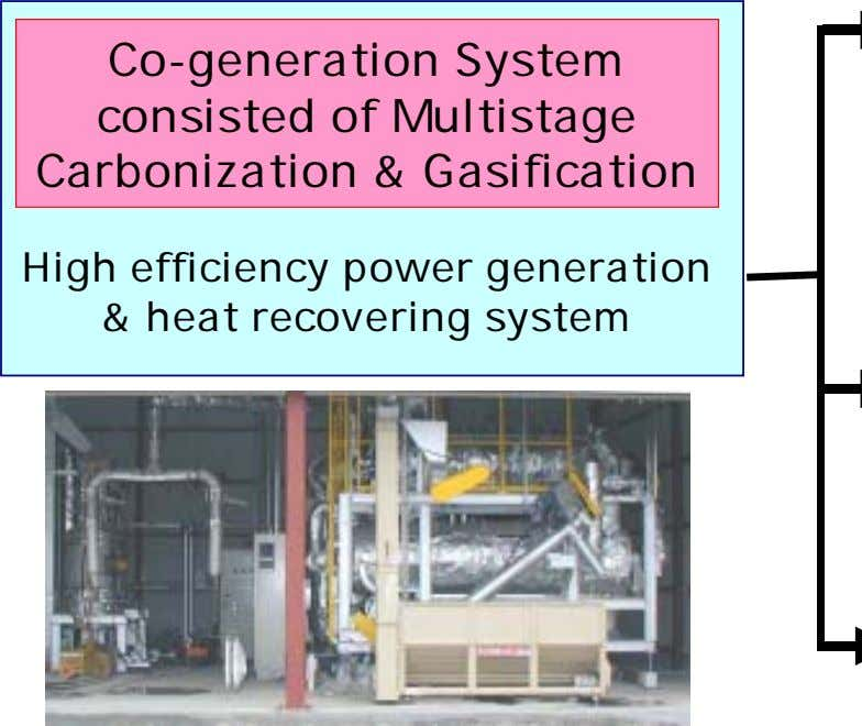 Co-generation System consisted of Multistage Carbonization & Gasification High efficiency power generation &