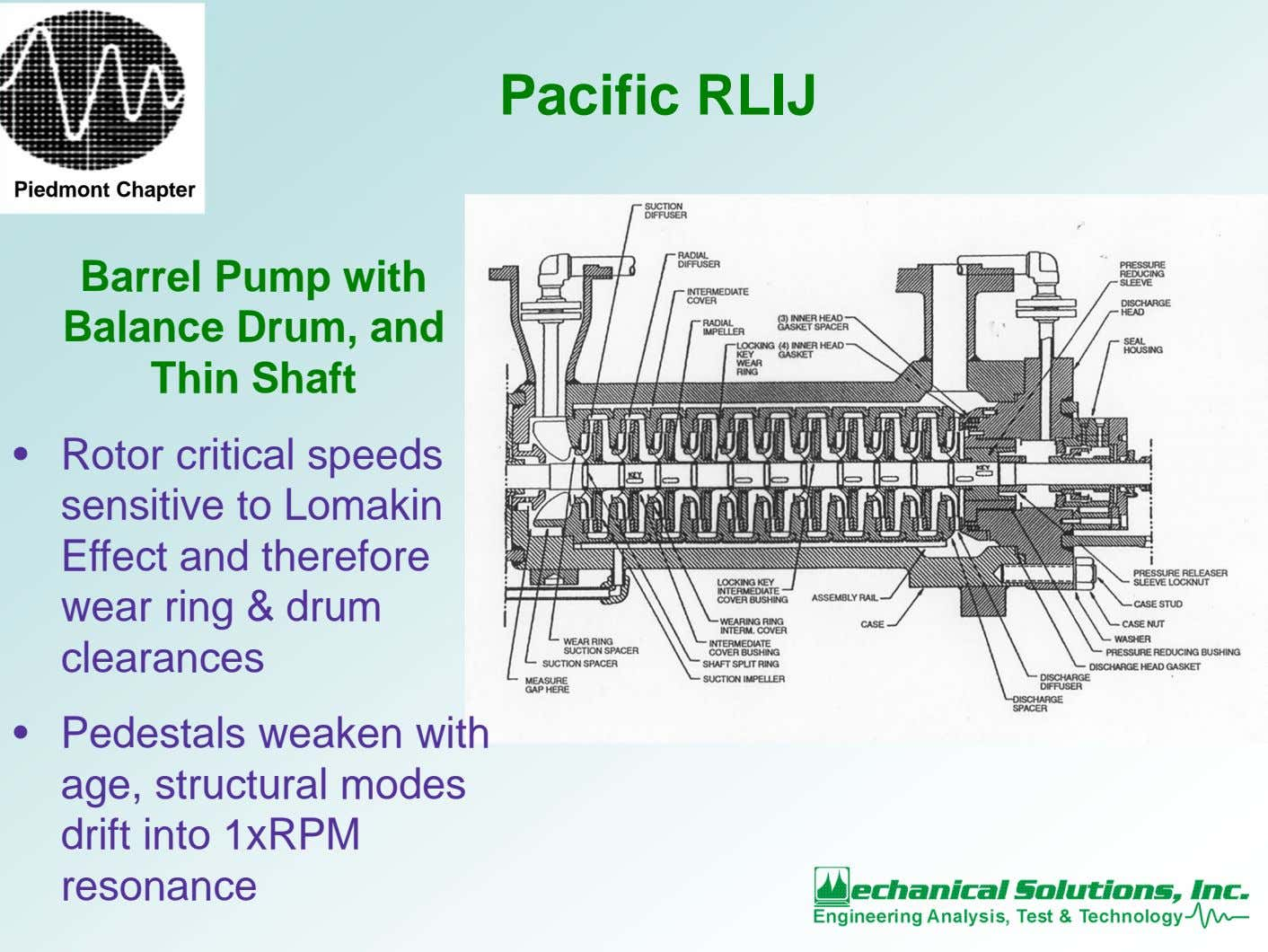 Pacific RLIJ Piedmont Chapter Barrel Pump with Balance Drum, and Thin Shaft • Rotor critical