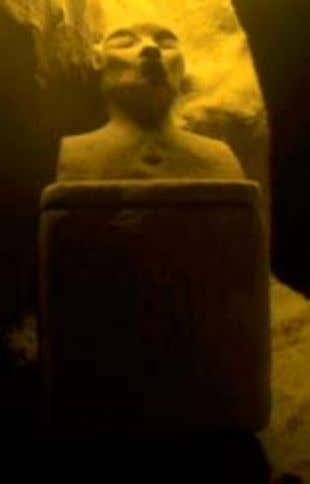 of a deceased Vulcan. Surak's Katric Ark shown below. Typically, traditional Vulcans would craft such items