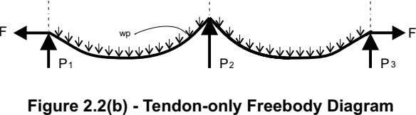 F wp F P P P 1 2 3 Figure 2.2(b) - Tendon-only Freebody Diagram