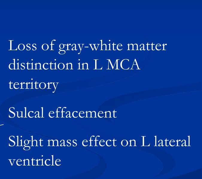Loss of gray-white matter distinction in L MCA territory Sulcal effacement Slight mass effect on