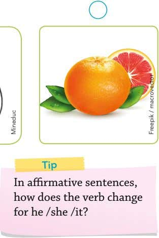 In affirmative sentences, how does the verb change for he /she /it? Tip Freepik /
