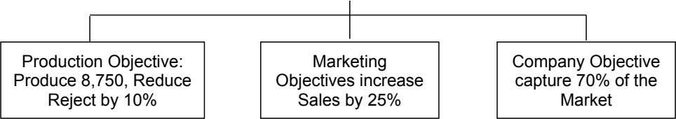 Production Objective: Produce 8,750, Reduce Reject by 10% Marketing Objectives increase Sales by 25% Company