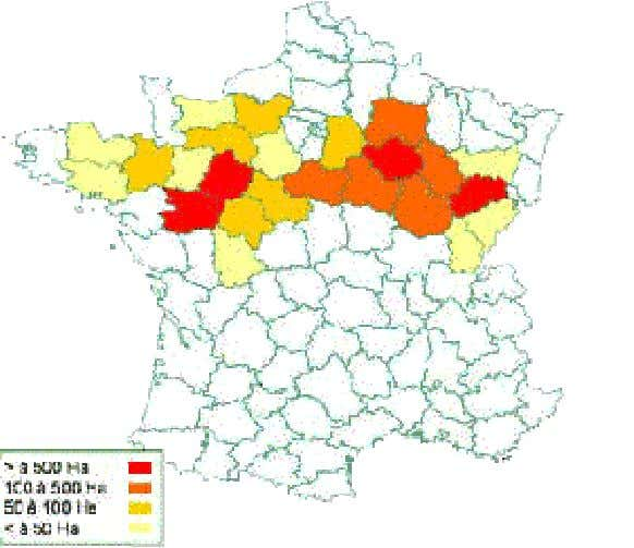des surfaces de chanvre cultivées en France. (source FNPC) On y distingue plusieurs bassins de production