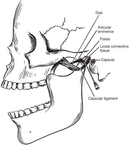 Chapter 4: Anesthesia for Head and Neck Surgery Lee Otolaryngology_Ch4_p075_102.indd 93 93 Figure 4-3 (1) Introduce
