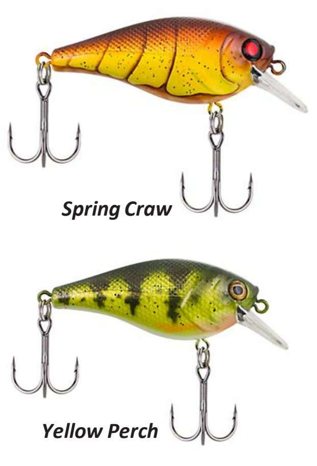Spring Craw Yellow Perch