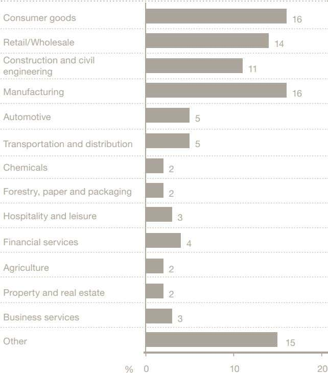 Consumer goods 16 Retail/Wholesale 14 Construction and civil engineering 11 Manufacturing 16 Automotive 5