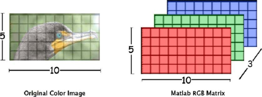 ( Red , Green , and Blue ) for each pixel. (See Fig.1-4). Hence, Fig. (1-4)