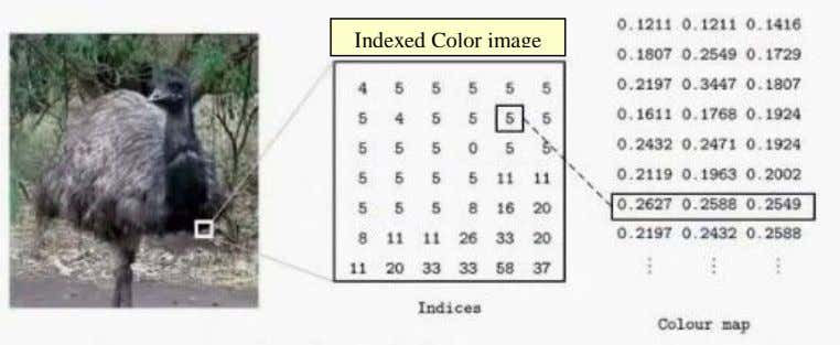 Indexed Color image